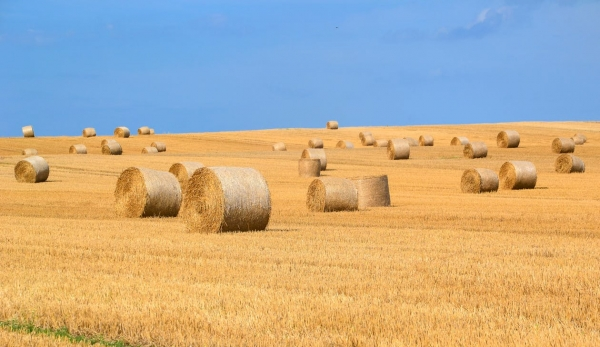 agriculture-arable-bale-countryside